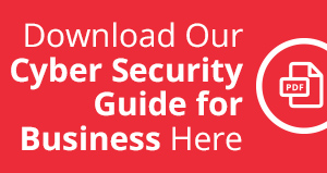 PDF Download Cyber Security Guide for Business